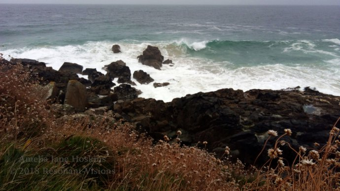 Coastal path with thrift above dark brown rocks as breakers cover