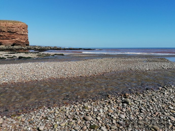 Where river meets the sea over pebbles
